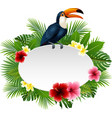 cartoon funny toucan with blank sign on plant back vector image vector image