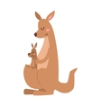 kangaroo cartoon australia animal with baflat vector image