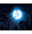 Night landscape with starry sky and full moon on a vector image vector image