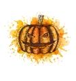 pumpkin Sketch vector image