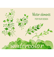 Set of watercolor branches vector image vector image