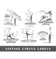 set vintage circus labels vector image