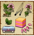 Variety of plants flowers and cosmetics set vector image