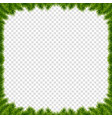 christmas or new year realistic fir-tree border vector image