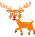 cute deer cartoon vector image vector image