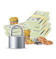finance secure concept metal coins money vector image