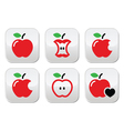 Red apple apple core bitten half buttons vector image vector image