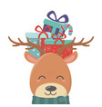 reindeer with gift on head celebration merry vector image