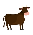 Bull animal farm cartoon icon vector image vector image