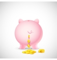 Coin falling from Piggy Bank vector image