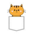 cute orange cat sitting in pocket pink cheeks vector image vector image