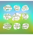 Healty food lettering set vector image vector image