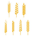 logo design and elements wheat grain vector image