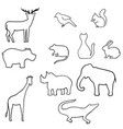 outline wild animal vector image vector image