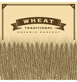 Retro wheat harvest card brown vector image vector image