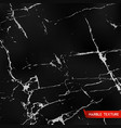black marble textures vector image