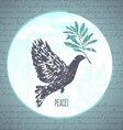 Ink hand drawn dove with olive branch vector image