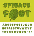 Spinach font Useful Herbs alphabet Green lettuce vector image