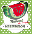 watermelon poster vector image