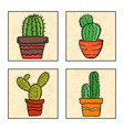 four cactus in a pot vector image