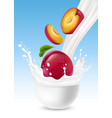 milk splash with plum fruit vector image
