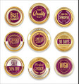 sale retro vintage golden badges and labels 11 vector image vector image