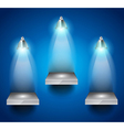 Shelves with 3 LED spotlight vector image vector image
