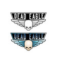 skull on background steel wings vector image