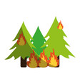 trees burning in forest vector image vector image
