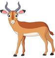 cartoon impala vector image