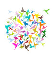 colibri collection sketch for your design vector image