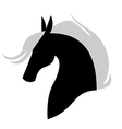 horse profile vector image vector image