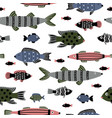 marine fishes seamless pattern vector image