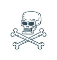 skull cartoon skeleton head drawing on white vector image vector image