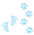 cute baby footprint and paws vector image vector image