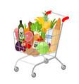 full shopping supermarket cart vector image
