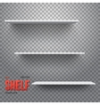 Realistic Shelf Shelf on Wall vector image