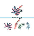 tropical palm leaves bouquet vector image vector image
