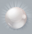 Glass ball gray transparent background vector image vector image