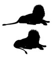 silhouettes of a lying lion vector image vector image