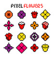 various colorful pixel flowers vector image