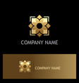 gold flower geometry logo vector image