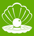 pearl in a sea shell icon green vector image vector image