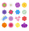 set colorful paper flowers white background vector image vector image