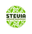 stevia leaves badge isolated on white background vector image vector image
