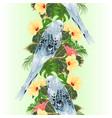 vertical border seamless background budgerigar vector image vector image