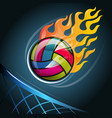 volleyball symbol vector image