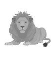 a lion a wild and ferocious predator leo the vector image vector image