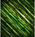 Background with bamboo vector image
