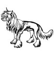 decorative standing portrait of chinese crested vector image vector image
